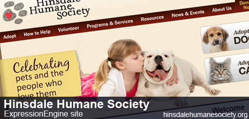 Hinsdale Humane Society preview